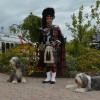 014_Highlander