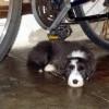Garage2_mein Rad